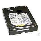 1000GB Western Digital WD10EZEX