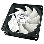 Arctic Cooling Fan F8 PWM