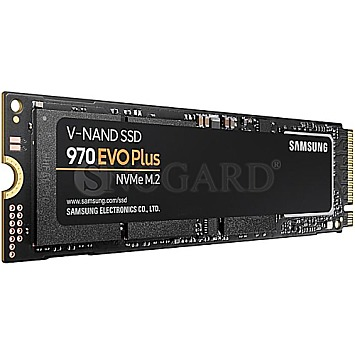 500GB Samsung SSD 970 EVO Plus M.2